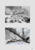 Rolf Beese - Winter an Rügens Kreideküste